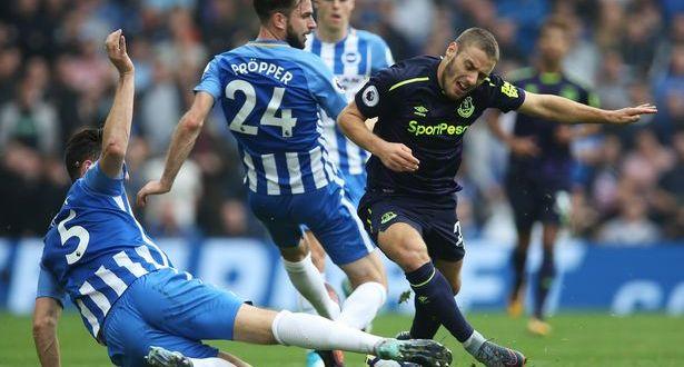Prediksi Everton Vs Brighton Albion 03 November 2018